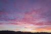 Yuma Sunset_N5A1439