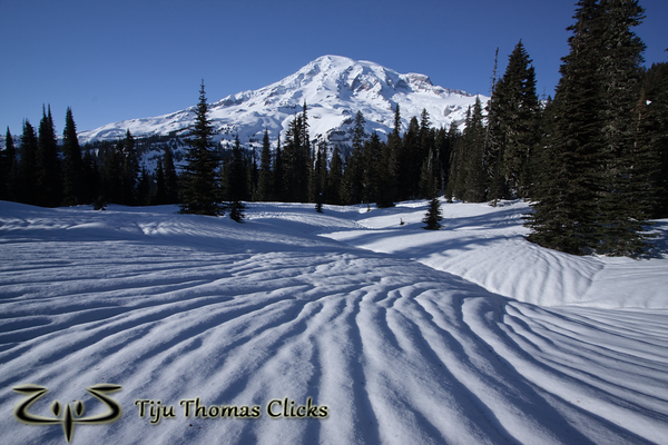Mt Rainier National Park / Washington  I took this snap while snowshoeing close to Paradise. I loved the texture made on the snow. I have no idea how it forms on the snow, but it looked amazing. I positioned myself so that the lines point toward Rainier.