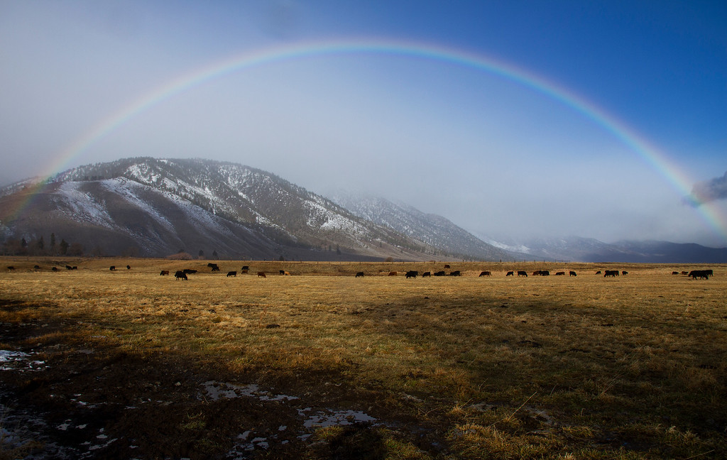Carson Valley, Nevada