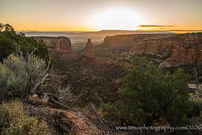 Desert Tranquility