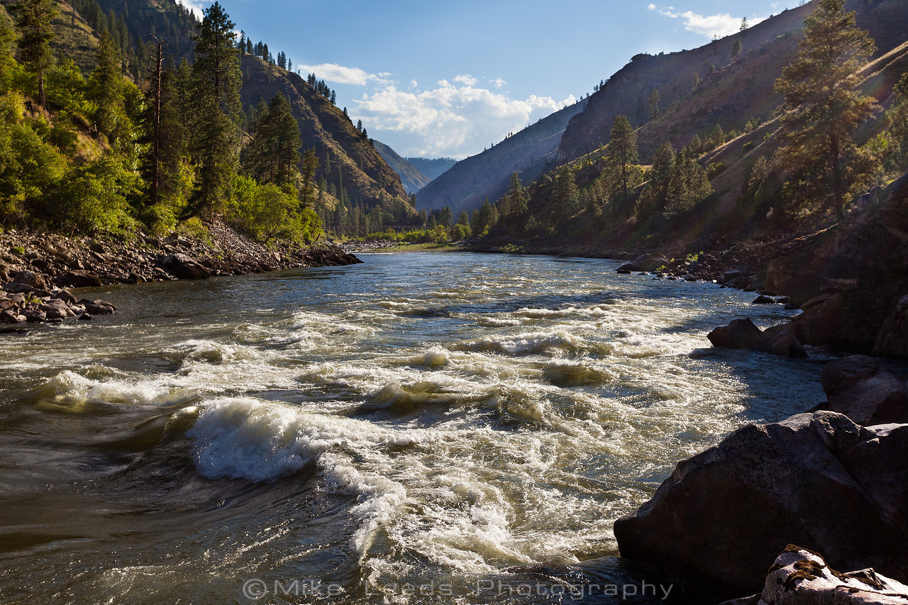 Golds Wave on the Main Salmon River in Idaho on a summer afternoon.