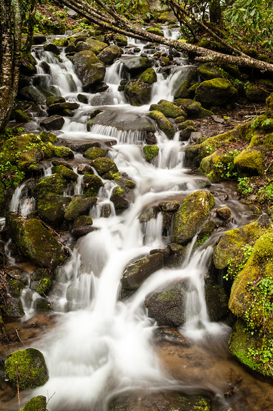 Waterfall on small stream, Great Smoky Mountains National Park, North Carolina