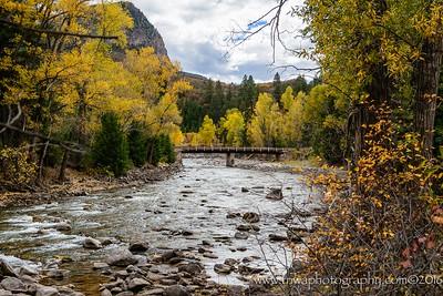 Bridge Into Nature
