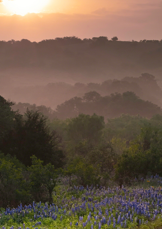 Springtime in the Texas Hill Country