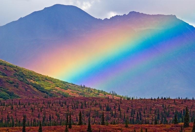 Old Denali Road Rainbow
