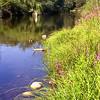 goodrabidgee river