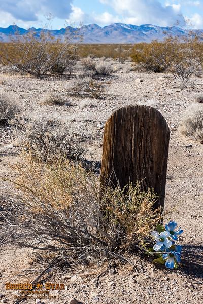 Unmarked grave, Rhyolite Cemetary.  Rhyolite, Nevada