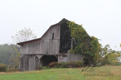 THe Virginia Countryside
