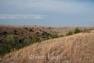 Habitat; Russel County, Kansas  2011-04-14  #2