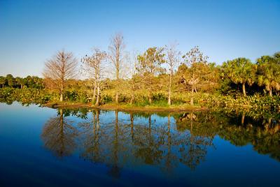 Alachua Sink Paynes Prairie Preserve Gainesville, Florida © 2010