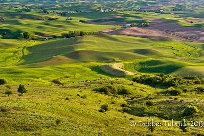 Palouse Steptoe Butte Washington © 2013
