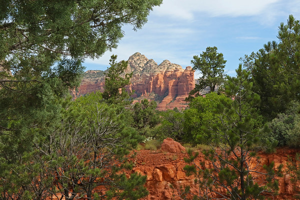 Trees And Red Rock, Sedona, Arizona, #2