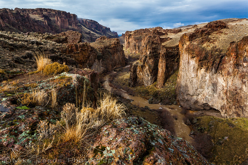 Succor Creek State Park in Oregon on a stormy February afternoon.