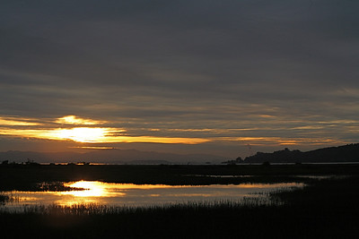 Sunrise, Las Gallinas Valley Wetlands, San Rafael, CA. Dec 21, 2008
