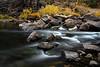 Yosemite 11-12-13 _N5A0455