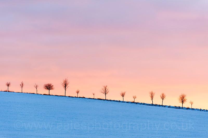 Stark, winter landscapes, Hertfordshire UK 5th December 2012