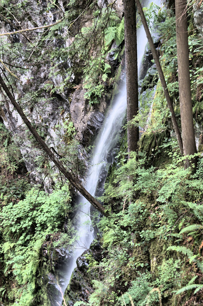Waterfall at Lynn Valley Park