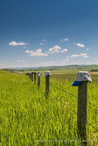Home is Where You Hang Your Hat Alberta Countryside Canada © 2014