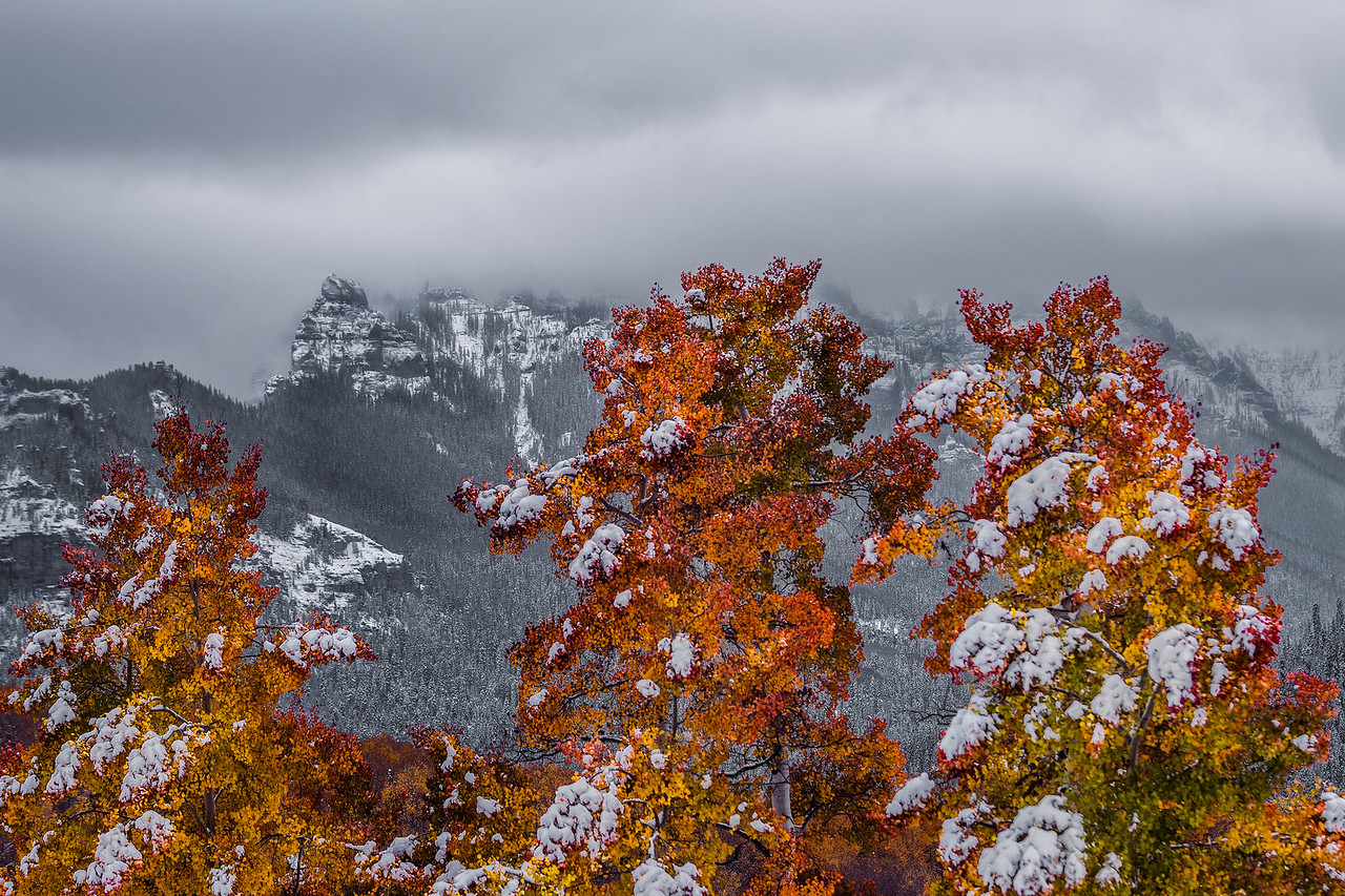 Fall in the San Juans