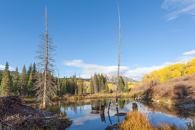Fall In Colorado Beaver Pond