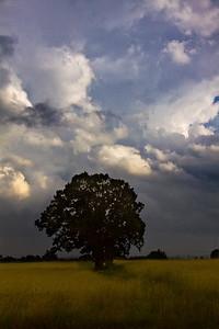 Passing storm. Calverton, NY