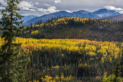 Deja Vu Fall Changes Denali National Park Alaska © 2014