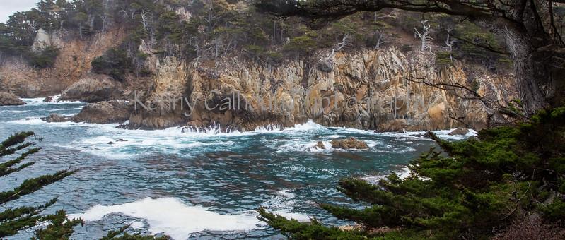 Point Lobos _N5A8382