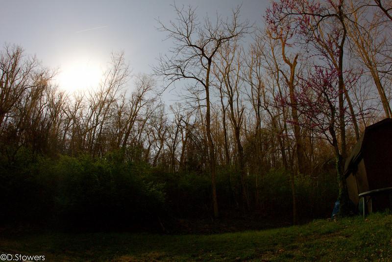 JPG-DLS-Mar2011-_MG_6482