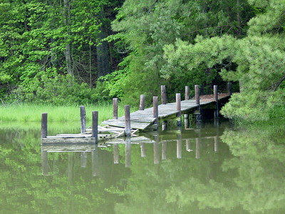 """Old dock on Meyers Creek, off the Corrotoman River in the Northern Neck, Va. I shot this in May of 2003 with my Sony DSC 3 megapixel. This was my first digital camera, and I feel like this shot started  the whole """"KW FILMZ"""" movement. I was just cruizing the back waters in my father-in-laws boat snapping pics of anything scenic. The water got down to about waist-deep and I started churning up the bottom and decided to turn around just before taking this. Check out the next pic of the same location, taken Summer 08'."""