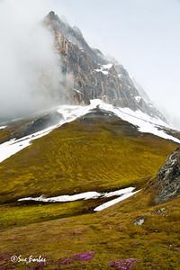 Gnalodden, Hornsund, Svalbard, Norway