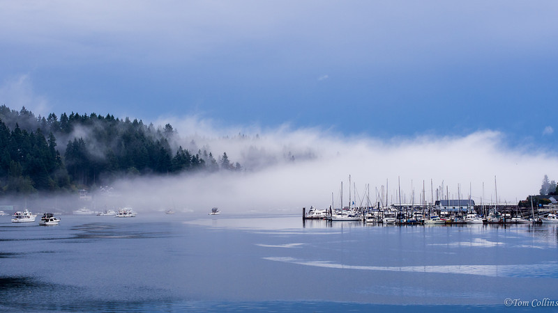 Gig Harbor, WA Morning Fog