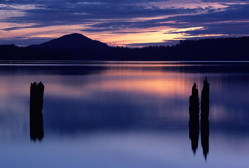 Lake Quinault Dusk Olympic Natl Park