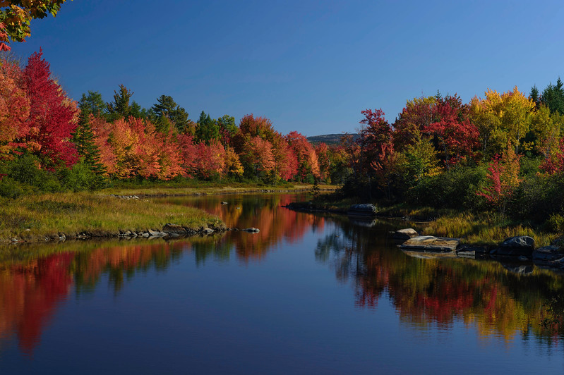 The Road to Acadia