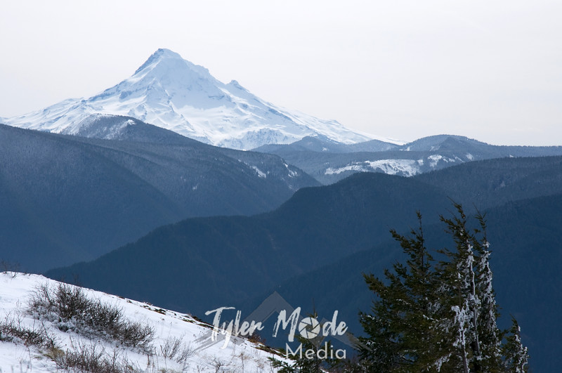 Mt. Hood from Hardy Ridge, Washington