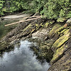 Lush rocky shoreline.