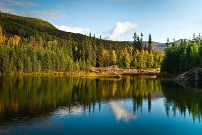 Lake Reflections In Later Summer Chena Hot Springs Alaska © 2009