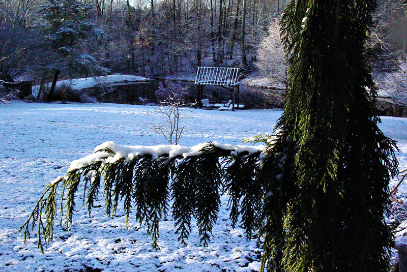 A frosting of snow and a view to the pond from the back steps of the house.