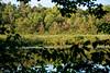 Gilligan Lake