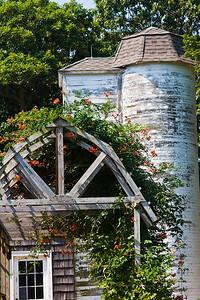 Bayard Arboretum