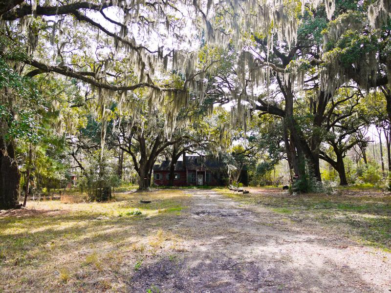Abandoned plantation house