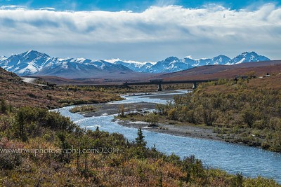 Savage River Trail Denali National Park Alaska © 2015