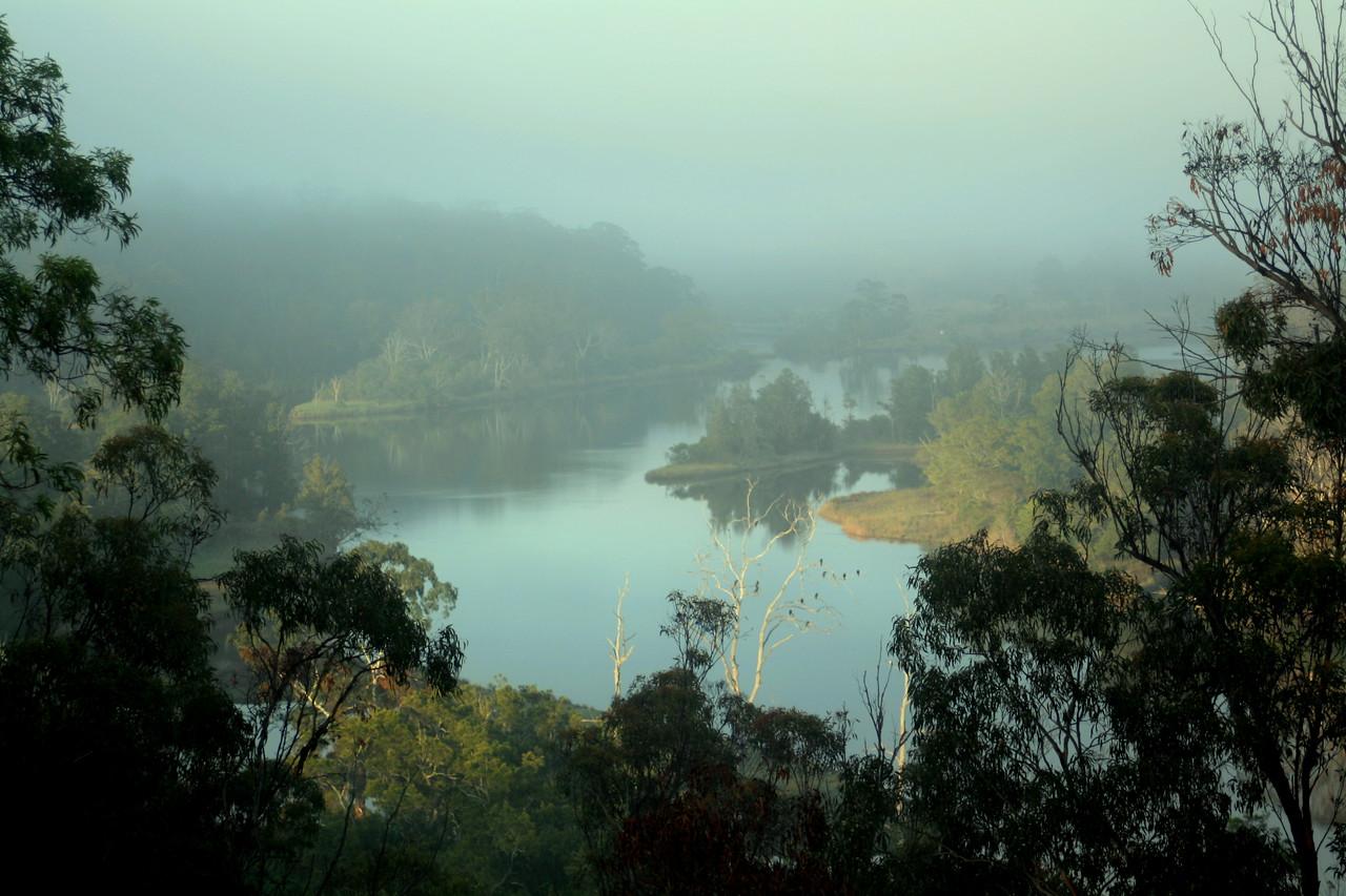 Bega River in mist