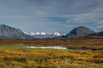 Alaskan Range from Denali Highway Denali Highway Alaska © 2014