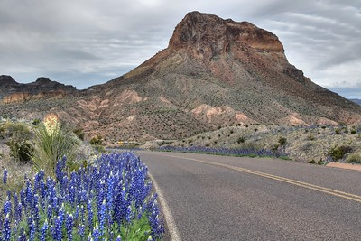 Road to Santa Helena Canyon - Big Bend National Park