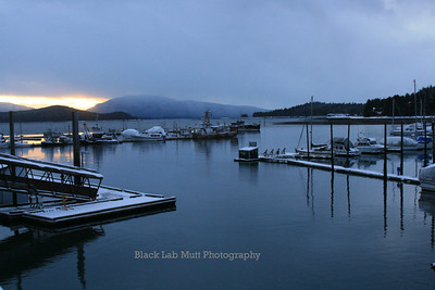 Auke Bay Harbor in winter