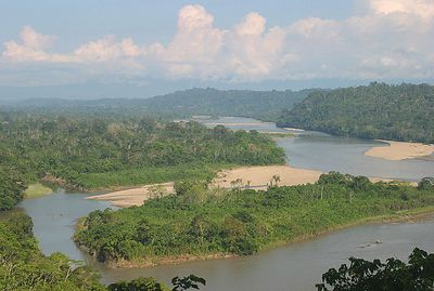 """""""Mirador"""" Ecuador, Amazon Rainforest, Yachana Lodge In standing at this overlook, one feels a part of an amazing ecosystem - the Amazon Basin - that appears to extend forever."""