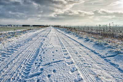 UK Weather: Snow in the Fens, Cambridgeshire