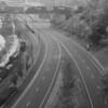 Neyland Drive