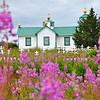 Russian Orthodox Church and Fireweeds in Ninilchik, Alaska