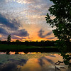 Lake Side Reflections